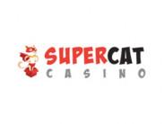 Обзор онлайн casino Supercat с хорошей отдачей